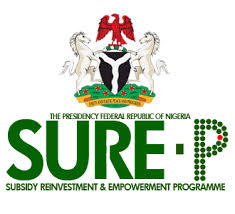 Subsidy Reinvestment and Empowerment Programme